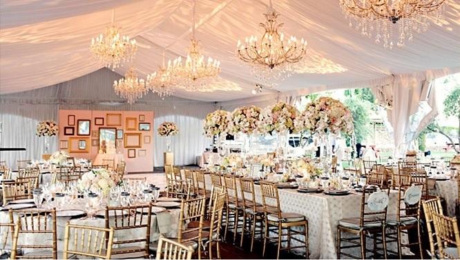 Wedding planner utah wedding decor ideas eventz utah helps will all of your events planning needs junglespirit Image collections